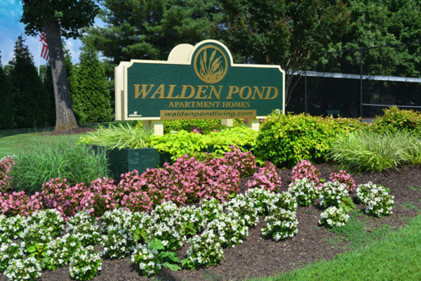 Walden_Pond_Living